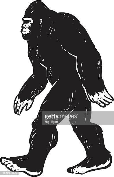 illustrated bigfoot - bigfoot stock illustrations