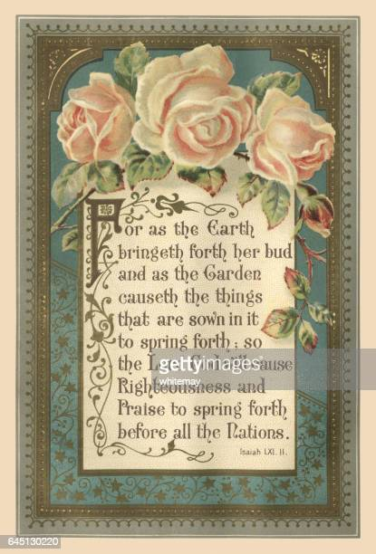illustrated victorian bible quotation - rose flower stock illustrations, clip art, cartoons, & icons