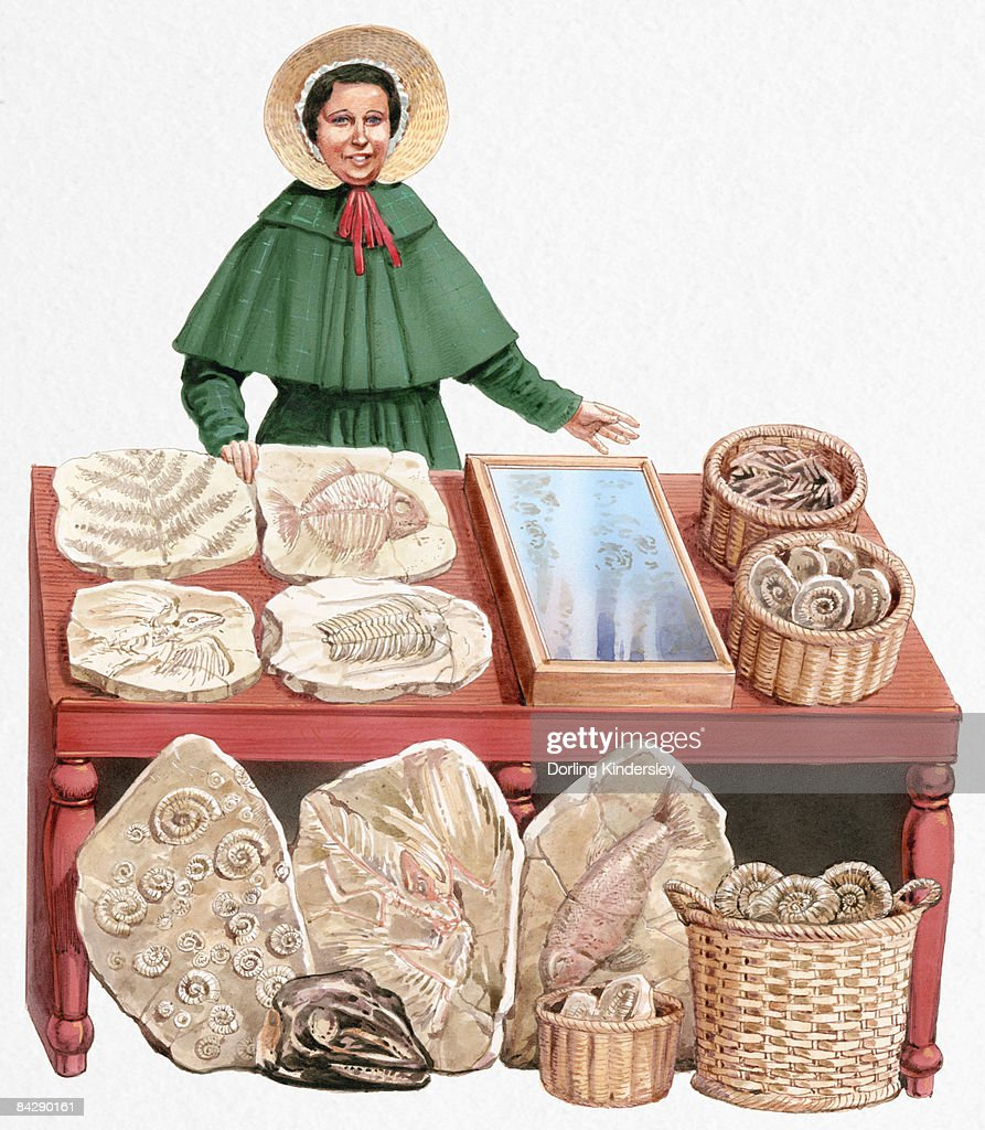 Illustration of 19th century paleontologist Mary Anning with collection of fossils : stock illustration