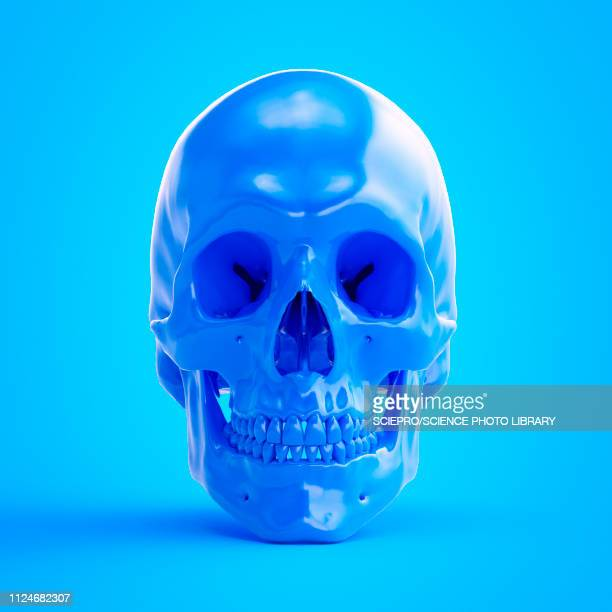 illustration of a blue skull - death stock illustrations