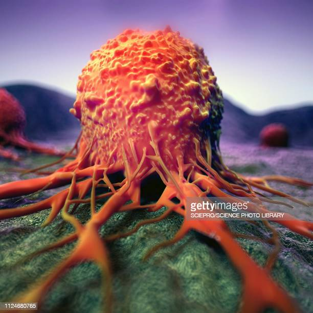 illustration of a cancer cell - tumor stock illustrations