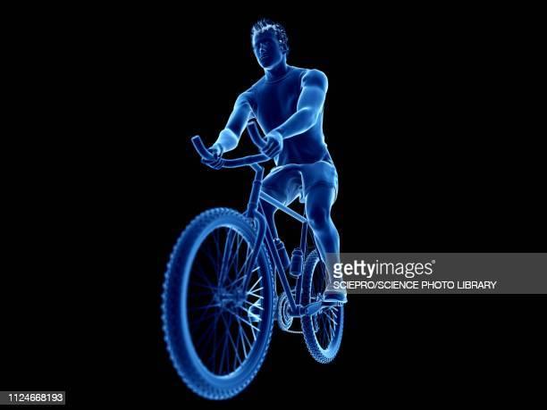 illustration of a cyclist - the human body点のイラスト素材/クリップアート素材/マンガ素材/アイコン素材
