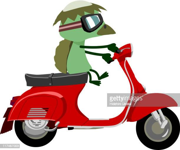 illustration of a duck on a moped - moped stock illustrations, clip art, cartoons, & icons