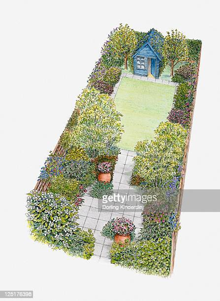 Illustration of a garden containing shed, patio area, lawn, shrubs and containers