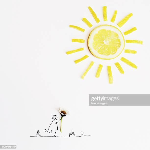 ilustrações, clipart, desenhos animados e ícones de illustration of a girl holding a daisy flower - limão amarelo
