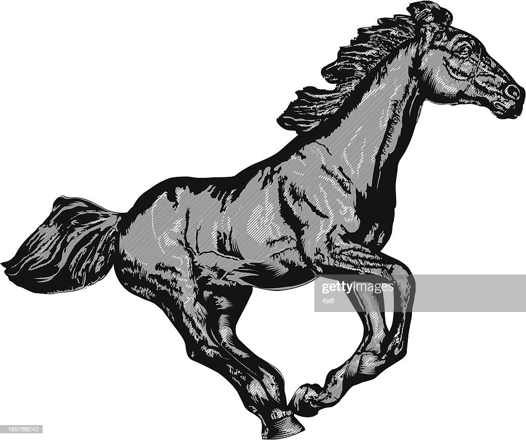 Illustration of a horse gallopping