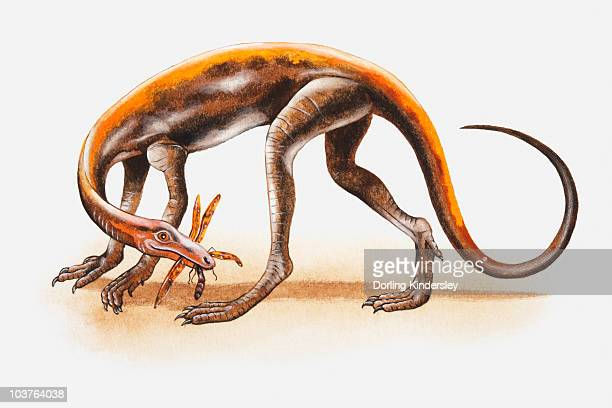 Illustration of a Lagosuchus with prey in its mouth, Triassic period