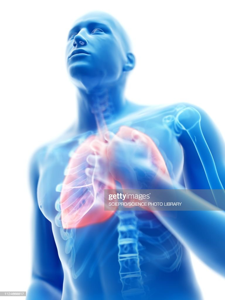 Illustration of a man with an inflamed lung : stock illustration