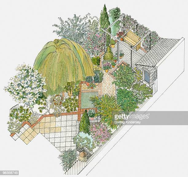 Illustration of a paved garden, containing various trees, including a weeping willow, shrubs, a pergola and a shed