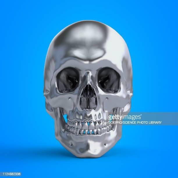 illustration of a skull - shiny stock illustrations
