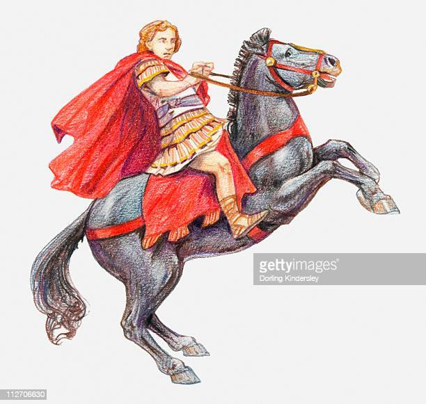 illustration of alexander the great on his horse, bucephalus - alexander the great stock illustrations