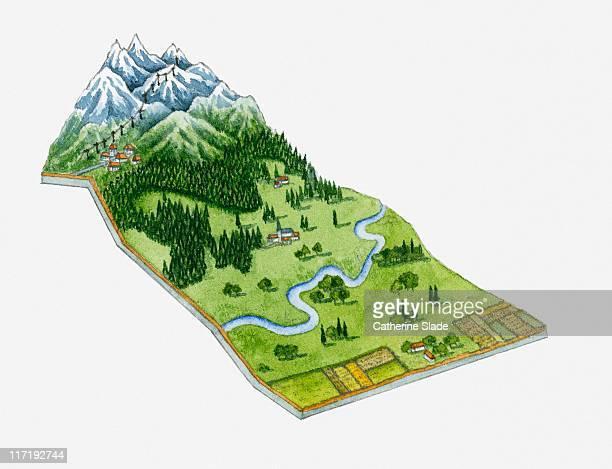 Illustration of alpine vegetation, mountains and lower green grasslands of Switzerland and Austria