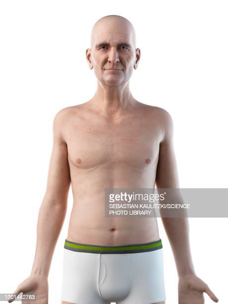 illustration of an old man's upper body - digestive system stock illustrations