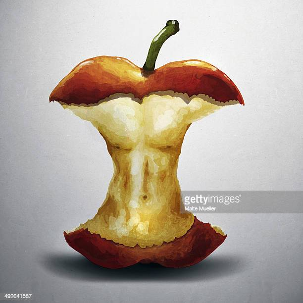illustration of apple core with human torso, close-up - imagem a cores stock illustrations