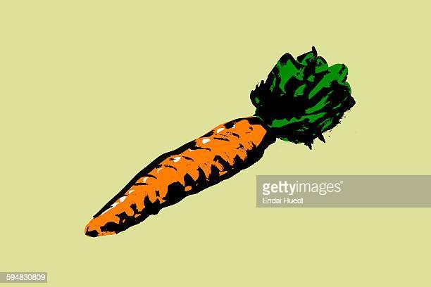 ilustrações de stock, clip art, desenhos animados e ícones de illustration of carrot against green background - cenoura