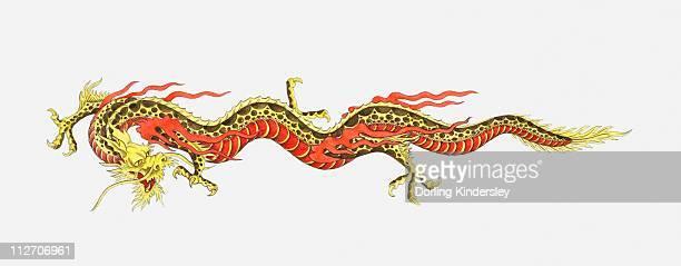 Illustration of Chinese dragon