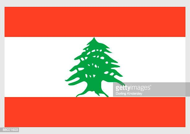 illustration of flag of lebanon, white stripe between two horizontal red stripes, with green cedar in center - cedar tree stock illustrations, clip art, cartoons, & icons