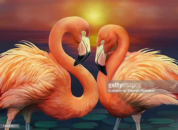 illustration of flamingos - flamingo stock illustrations, clip art, cartoons, & icons