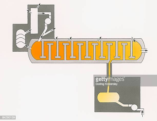 illustration of fractional distillation, the separation of mixture into component parts, or fractions by heating to temperature at which several fractions of compound evaporate - distillation stock illustrations, clip art, cartoons, & icons