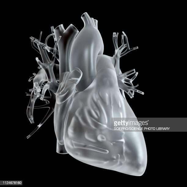 ilustraciones, imágenes clip art, dibujos animados e iconos de stock de illustration of glass heart - cristal material