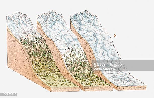Illustration of global snowlines, on the equator (Mount Kenya); the European Alps, and in polar regions (Mount Vinson, Antarctica)