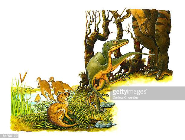 Illustration of green dinosaur at feet of large, predatory bipedal theropod, with small Hypsilophodon dinosaur hiding in leaves, and pair of dinosaurs standing in lake