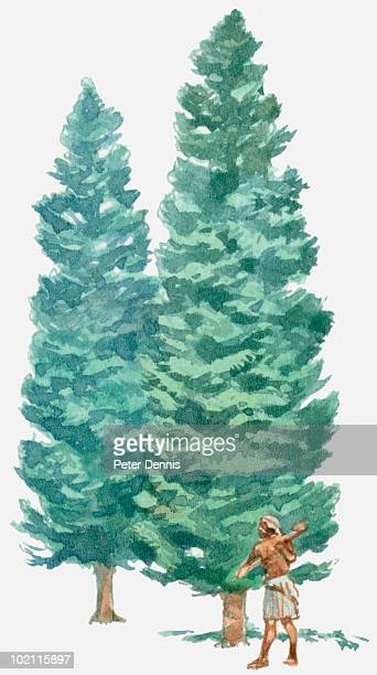 illustration of man in loincloth standing next to two tall trees holding a primitive axe - next stock illustrations