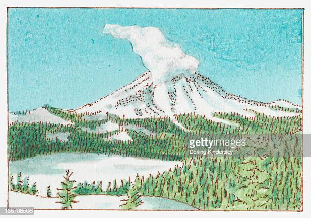 illustration of mount st helens, skamania county, washington state, usa - mount st. helens stock illustrations