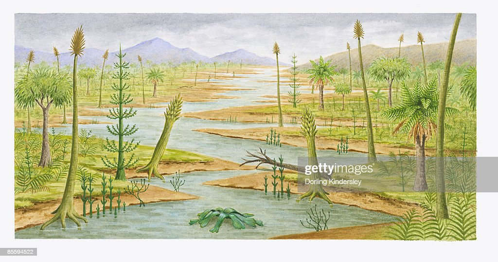 Illustration of New York 300 million years ago showing swamp, lush forest landscape, and mountains : Ilustración de stock