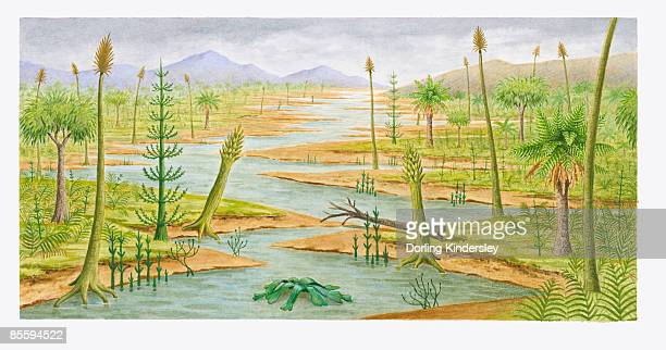 ilustraciones, imágenes clip art, dibujos animados e iconos de stock de illustration of new york 300 million years ago showing swamp, lush forest landscape, and mountains - era prehistórica