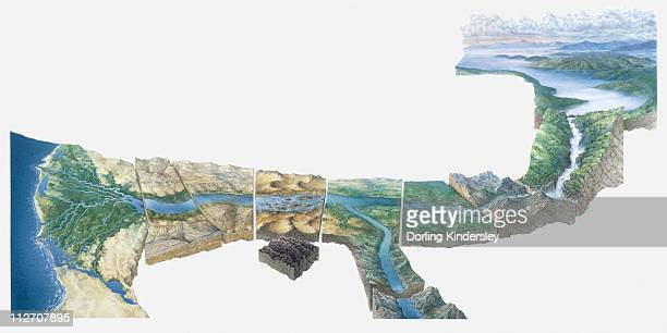 illustration of nile river from lake victoria to nile delta - nile river stock illustrations, clip art, cartoons, & icons