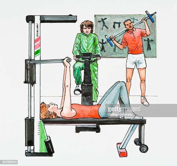 Illustration of people exercising in gym using strength training bench, exercise bike, and weightlifting