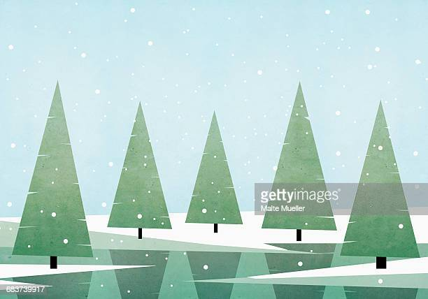 Illustration of pine trees growing on field against sky during winter