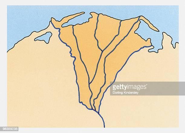 Illustration of river delta