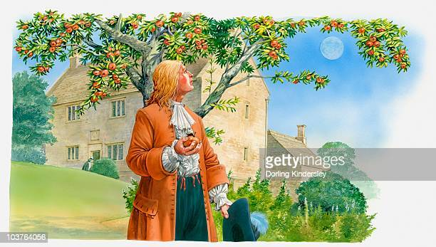 illustration of sir isaac newton holding apple in hand and looking up at tree - 膝から上の構図点のイラスト素材/クリップアート素材/マンガ素材/アイコン素材