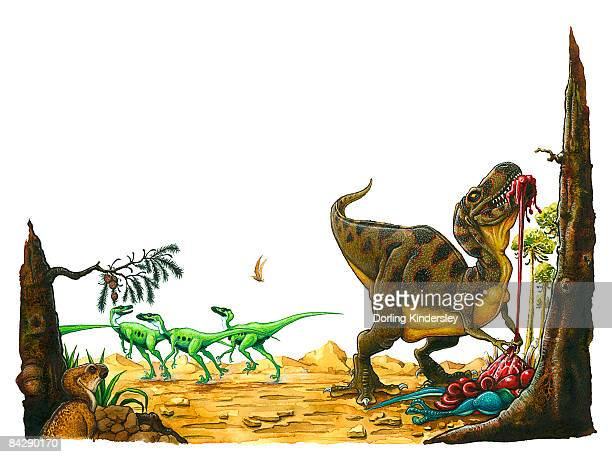 illustration of small hypsilophodon looking up at tyrannosaurus rex tearing at skin and organs of dead dinosaur as herd of green bipedal dinosaurs escape in distance  - endopack stock illustrations