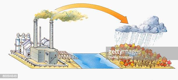 illustration of tall industrial smoke stack emitting sulfur smoke over river, and acid rain cloud over dead and dying trees surrounding lake - acid rain stock illustrations