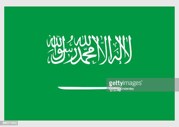 illustration state and military flag of the kingdom of saudi arabia, with white thuluth script and sword on green field - arabic script stock illustrations, clip art, cartoons, & icons