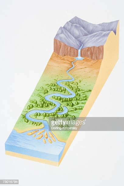 Illustration, three dimensional section of landscape showing river flowing out of mountains, through woodland valley and into sea.