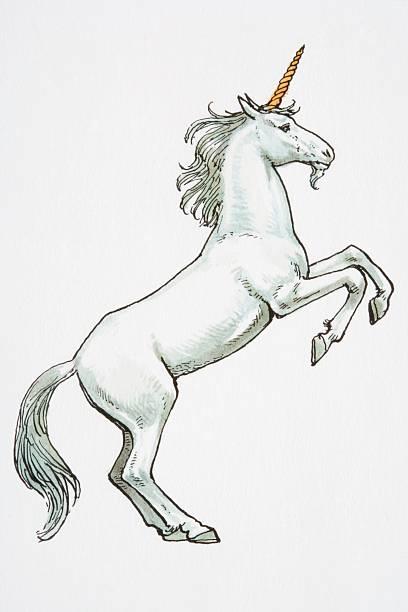 illustration, unicorn standing on hind legs. - unicorn stock illustrations