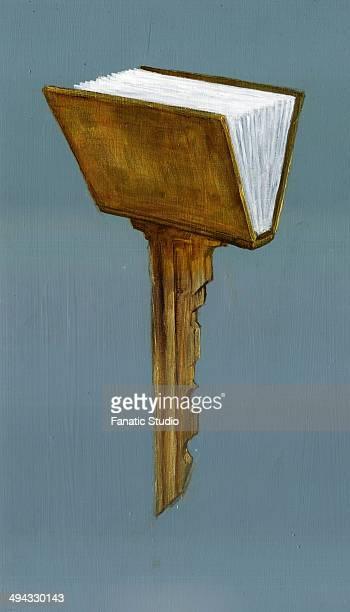Illustrative image of book representing key to success