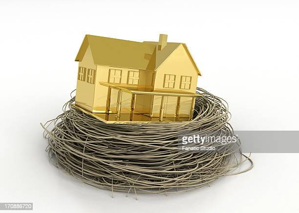 ilustraciones, imágenes clip art, dibujos animados e iconos de stock de illustrative image of gold house in bird's nest representing property profit - charity benefit