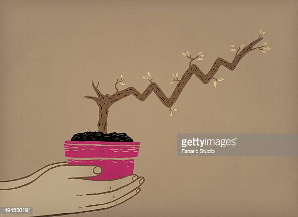 Illustrative image of human hands holding potted plant with stem grows like a stock chart representing business growth