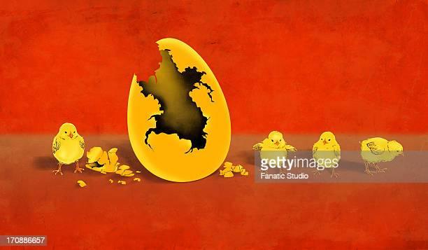 ilustraciones, imágenes clip art, dibujos animados e iconos de stock de illustrative image of newly hatched chicks by eggshell representing profit - charity benefit