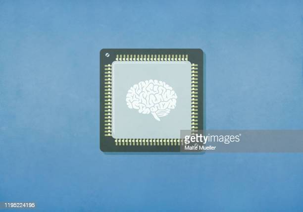 image of brain on computer chip - artificial intelligence stock illustrations