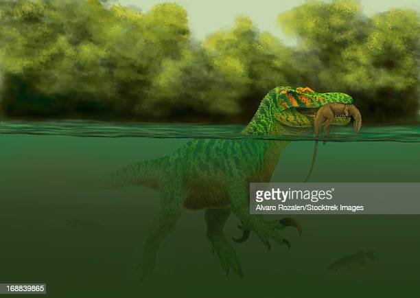 In the Cretaceous Spain, a Baryonyx escapes swimming from a brawl with a Hypsilophodon chick in his mouth.