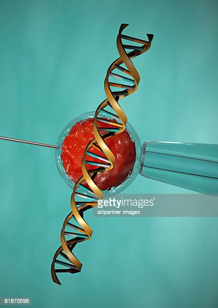 dna, in vitro fertilisation double helix needle patch clamp - artificial insemination stock illustrations