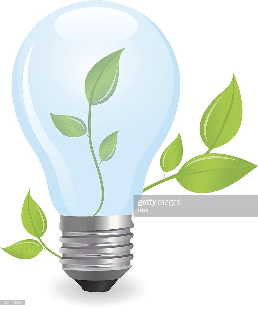 incandescent electric lamp