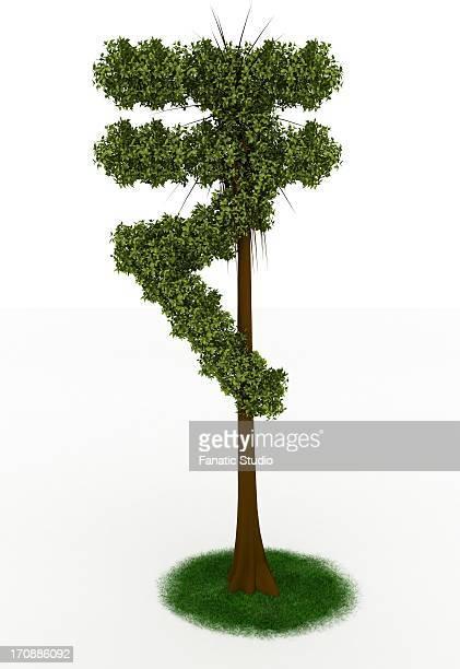 indian rupee tree on white background - money tree stock illustrations, clip art, cartoons, & icons