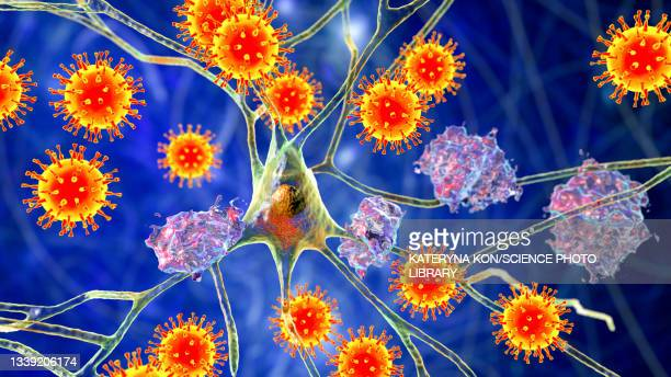 infectious etiology of dementia, conceptual illustration - the ageing process stock illustrations